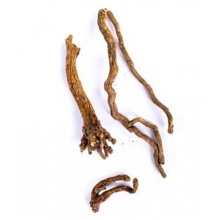 Tarczyca bajkalska korzeń 50g