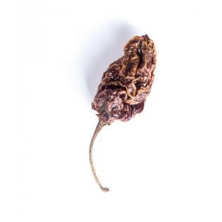Papryka chilli Habanero całe z ogonkiem 50g