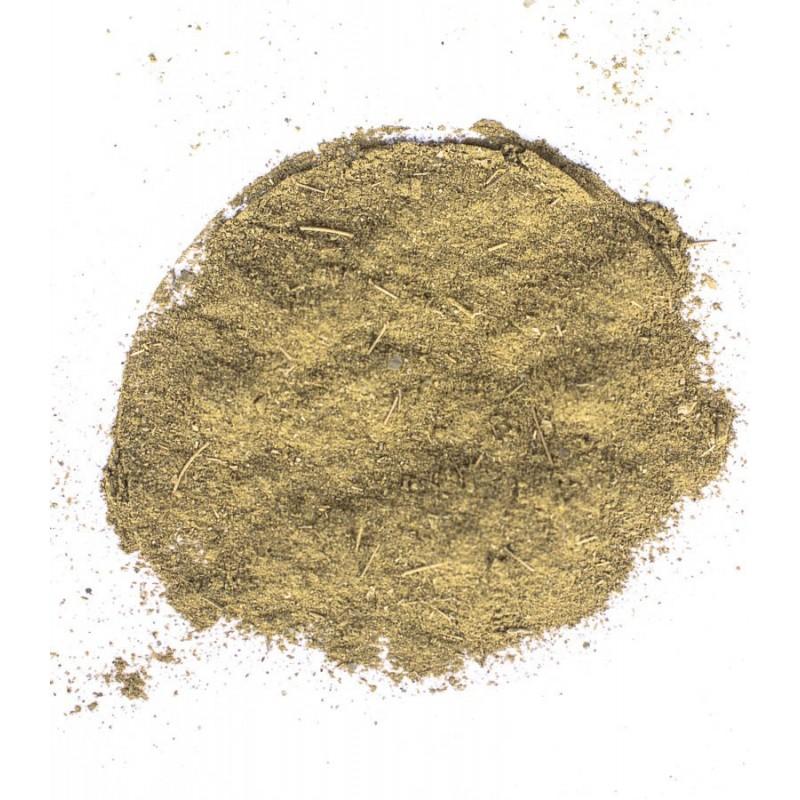 Moringa oleifera mielona 100g zoom