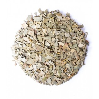 Eukaliptus liść 10kg
